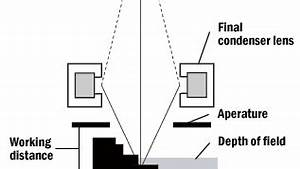 scanning electron microscopy central microscopy research With working of scanner