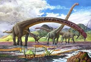 What Type Of Dinosaurs Lived In The Jurassic Period Quora