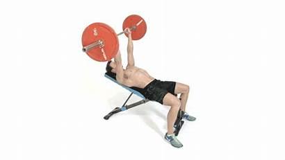 Press Barra Inclinado Con Lifting Weights Pecho