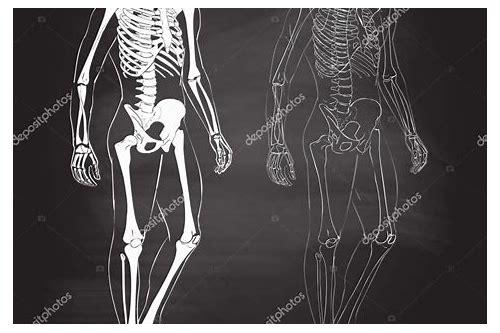 esqueletos de danzig baixar megacubo