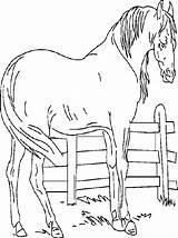 Ranch Coloriages Par sketch template