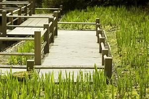 Was Kostet Eine Terrasse : holzdielen f r die terrasse diese holzarten sind die besten ~ Whattoseeinmadrid.com Haus und Dekorationen