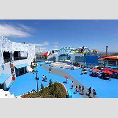 Ocean Park's Polar Adventure  Park World Online  Theme Park, Amusement Park And Attractions
