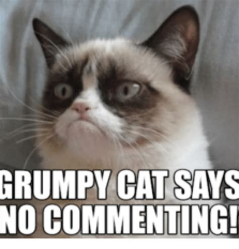 Grumpy Cat No Memes - grumpy cat no just no www imgkid com the image kid has it