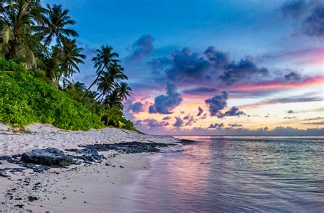 tropical beach free public domain pictures