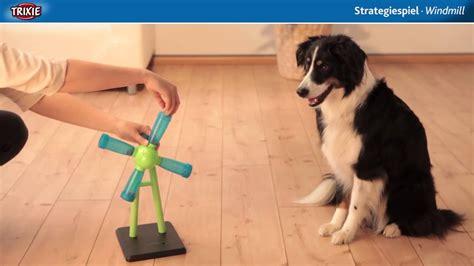 dog activity strategiespiel windmill intelligenzspielzeug