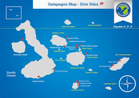 best cruises ships galapagos dive trips and dreams