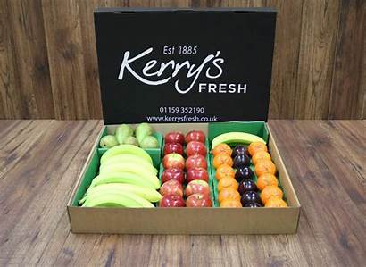Box Business Fruit Boxes Fresh Delivery Subscription
