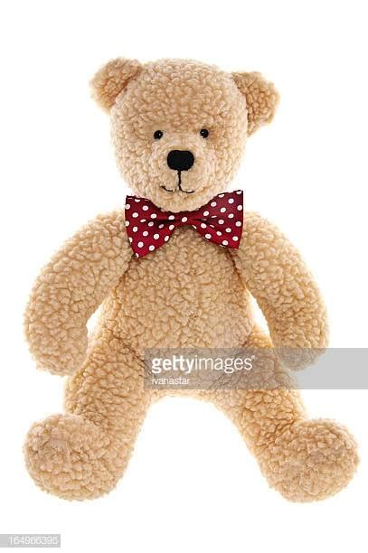 60 top teddy pictures photos images getty images