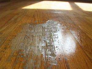 dog pee on laminate wood floor how to clean dog poop With how to clean up dog diarrhea on wood floor