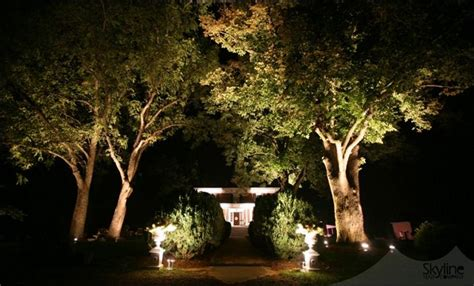 light up your trees event lighting