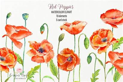 Poppy Watercolor Clipart Template Poppies Clip Card