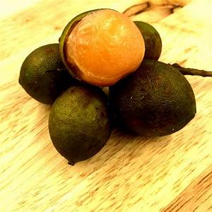 Mamoncillo (Spanish Lime) Information and Facts