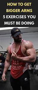 How To Get Bigger Arms  U2013 5 Exercises You Must Be Doing  Fitness  Bodybuilding  Gym  Arms