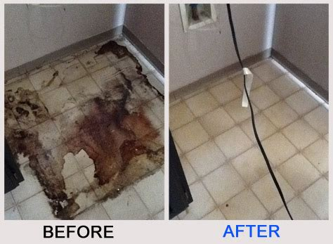 linoleum flooring cleaning linoleum floor cleaners carpet vidalondon