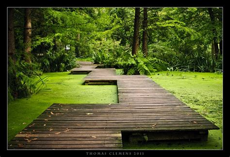193 Best Images About Green Culture On Pinterest Gardens