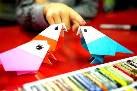 fold  origami bird parakeet art  kids hub