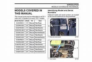 Service Manual 2009 Evinrude E N 5007802