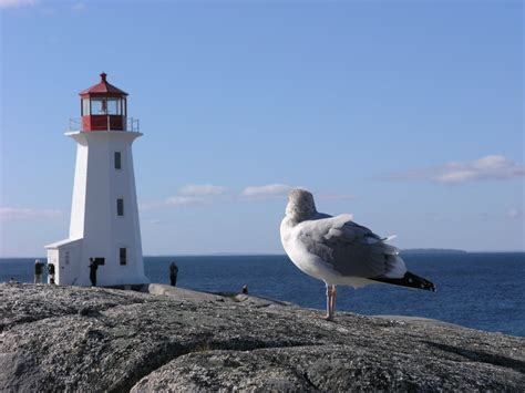 halifax to peggy s cove distance the cruisin fools queen mary day 5 halifax nova scotia