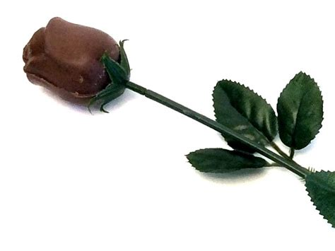 chocolate roses chocolate rose silver oldtimecandy com