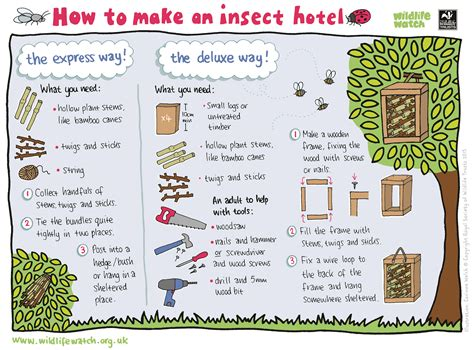 how to guide create shelter avon wildlife trust