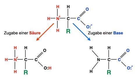 aminosaeuren und ph wert
