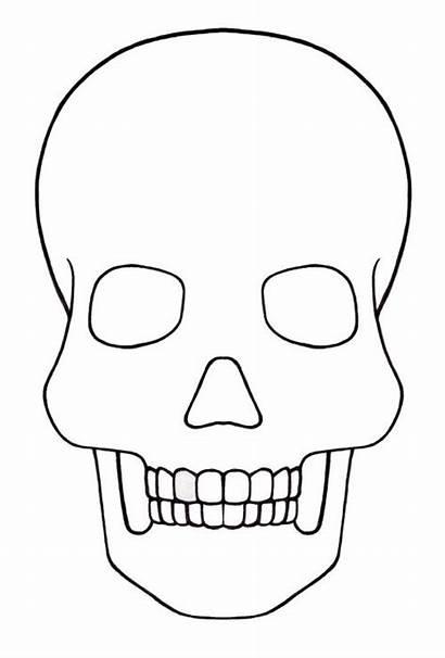 Skull Stencil Printable Templates Painting Stencils Patterns
