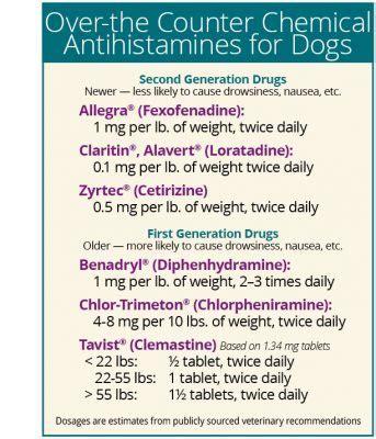 antihistamine foods  dogs food