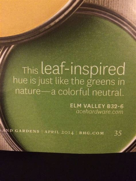 elm valley paint color by ace hardware just like the