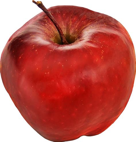 stock photo  apple apples fruit