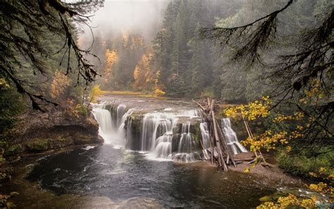 wondrous forest river waterfall wide wallpaper