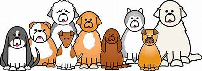 Clipart Dog Dogs Cartoon Pets Cat Clip