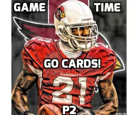 How's the emotion from this fan? Pin by Antonia A on Arizona cardinals | Cardinals football, Cardinals nfl, Arizona cardinals