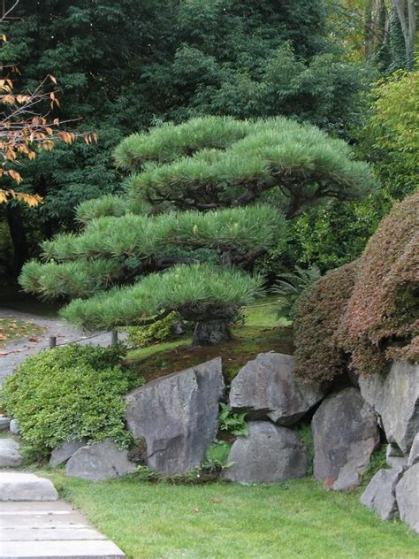 158 Best Images About Backyard Garden On Japanese Ideas 61