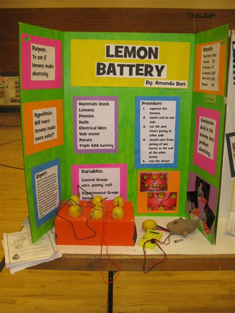 The Science Of My Life Updated Declo Science Fair With