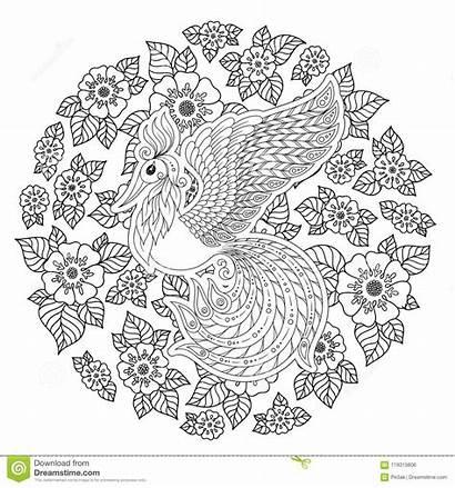 Coloring Firebird Stress Exotic Bird Anti Flowers