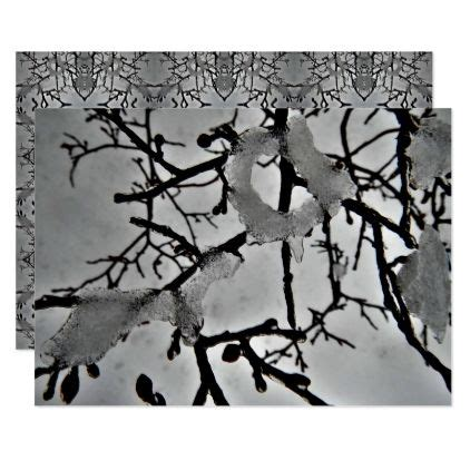 ice covered branches   bush cold snow card