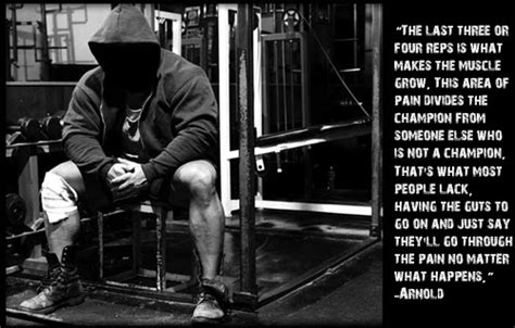 Animal Pak Quotes Wallpaper - powerlifting motivation quotes quotesgram