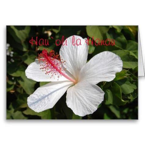 images  birthday  pinterest cards hawaiian