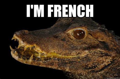 Alligator Meme - i m french dirty crocodile quickmeme