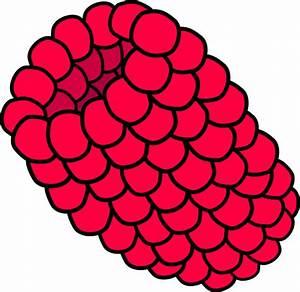 Red Raspberry Clip Art at Clker.com - vector clip art ...