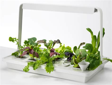 Picture Of Krydda Vaxer Kit For Indoor Gardening By Ikea