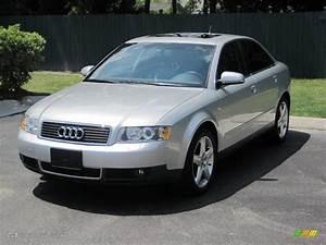 Audi A4 2003 : 2003 light silver metallic audi a4 3 0 quattro sedan 30935582 car color galleries ~ Medecine-chirurgie-esthetiques.com Avis de Voitures