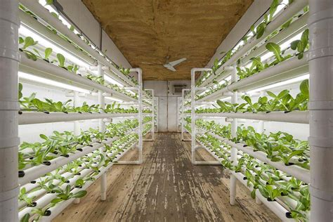 Can A Used 20foot Shipping Container Be Used To Grow Food?