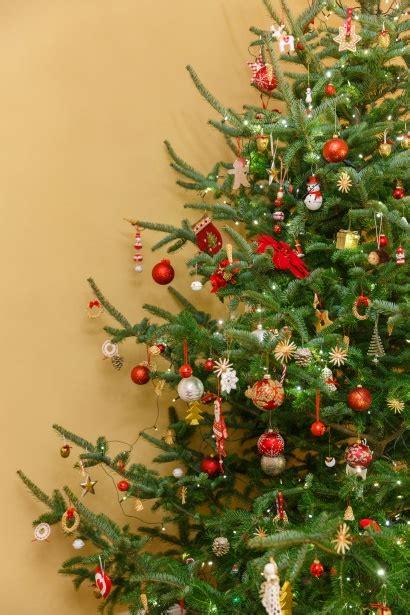 christmas tree   room  stock photo public domain