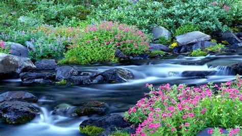 Meilleur Fond D écran Du Monde Nature Scenery Paysage Naturel D 233 Finition
