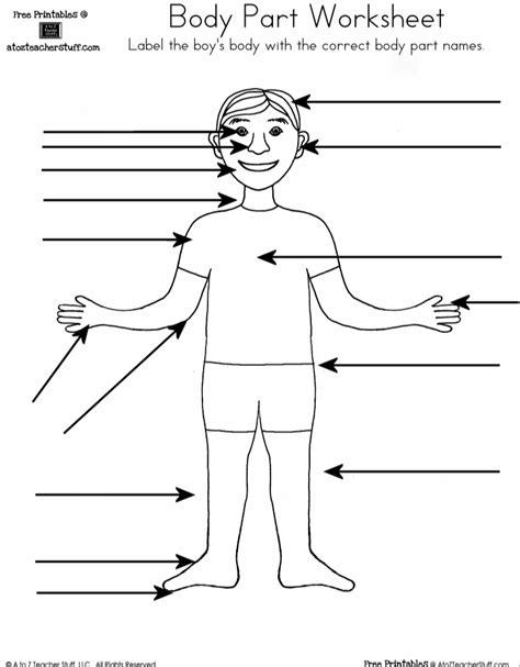 Body Part Worksheet Boy  Spanishenglish  Body Parts For Kids, Body Outline, Body Template