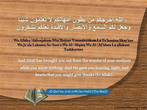 holy quran quotes quotesgram