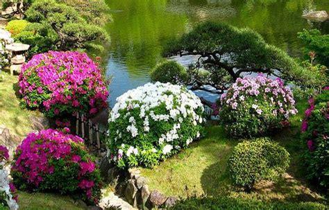 beautiful japanese garden design landscaping ideas