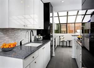 Modern Galley Kitchen Design contemporary kitchen chicago 1964